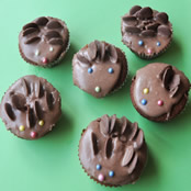 Mini hedgehog cakes
